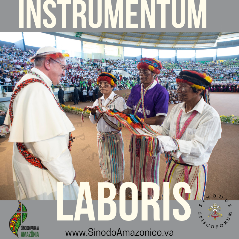 Pan Amazon Synod The Working Document for the Synod of Bishops