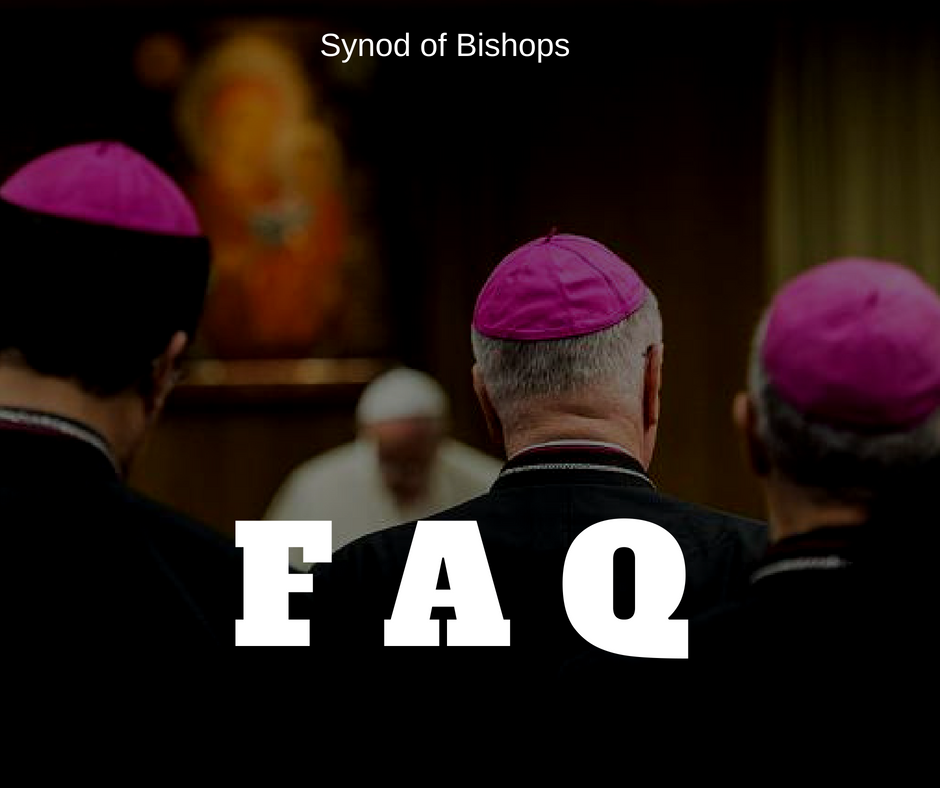 frequent ask question synod of bishop