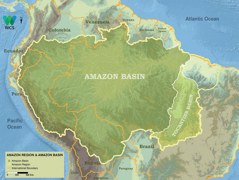 amazon-Basin-amazon-Region