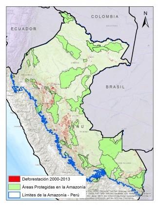 Amazônia No Peru